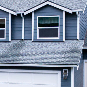 Siding, Windows, and Roofing Project